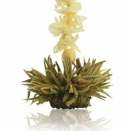 Jasmijn thee bloem