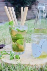 Apple Virgin Mojito
