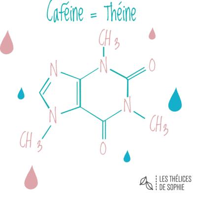 Théine et caféine